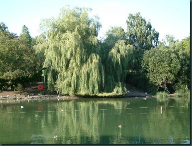 Park Lake 24-08-2003 041